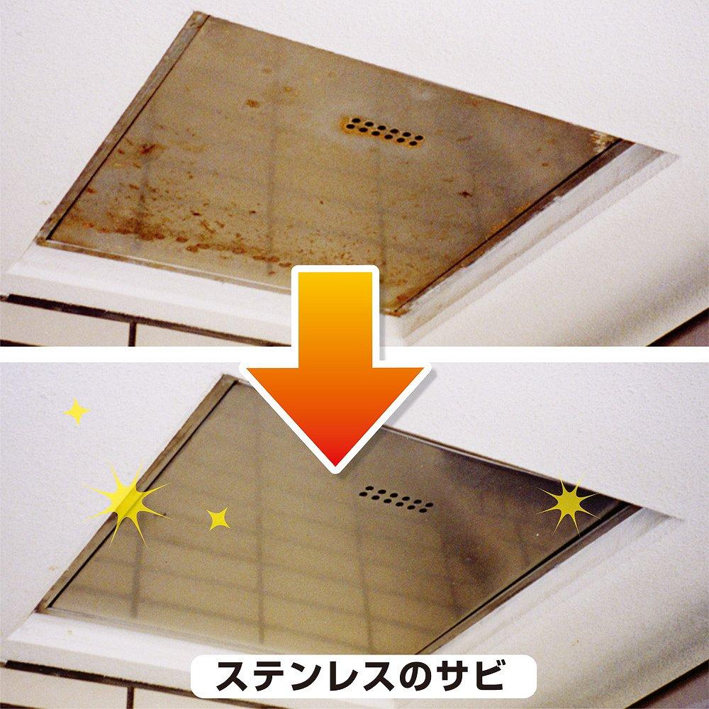 【あす楽対応】カンペハピオ復活洗浄剤ステンレス用100ML