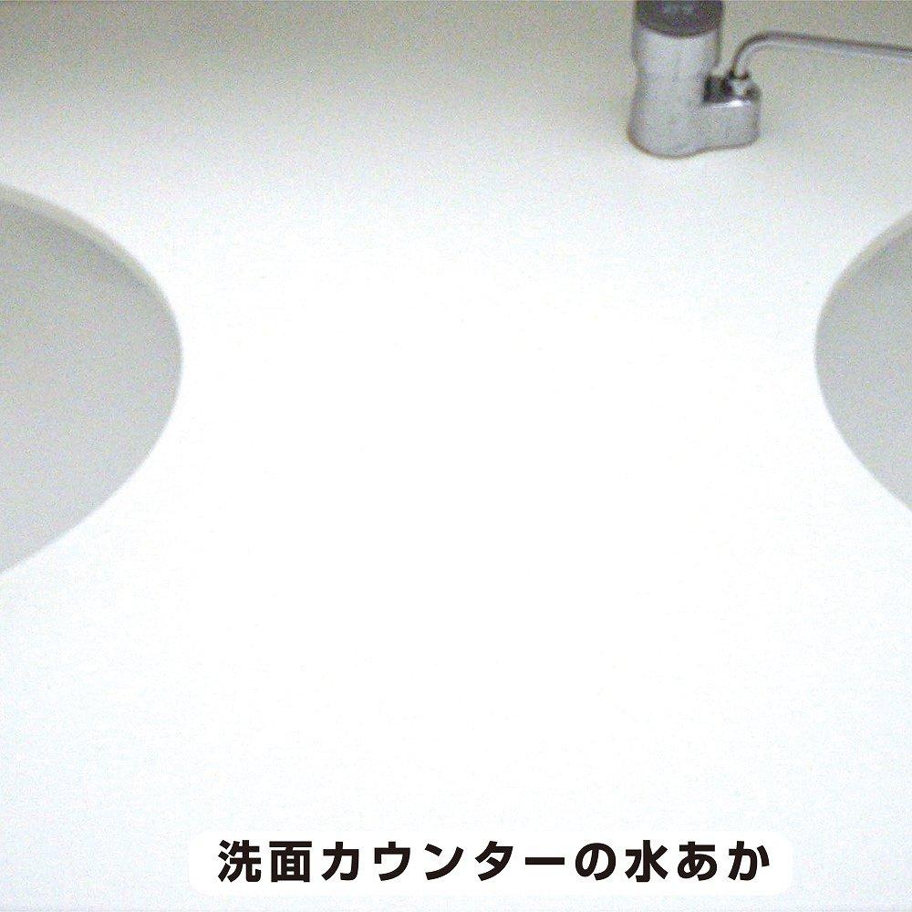 【あす楽対応】カンペハピオ復活洗浄剤洗面化粧台クリーナー100ML