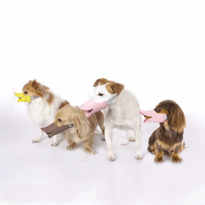 口輪に見えない口輪しつけ用や拾い食い 無駄吠え 新着 噛み付き防止に 正規品 OPPO オッポ quack クァック 訳あり商品 しつけ 全3色 噛み癖 SMサイズ 口輪 小型犬 犬