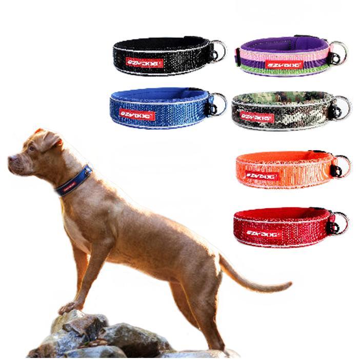 [メール便対応可][ウェットスーツ素材を使った肌に優しい首輪] EZY DOG イージードッグ ネオカラー Mサイズ[全6色]【犬 首輪 小型犬 高品質】