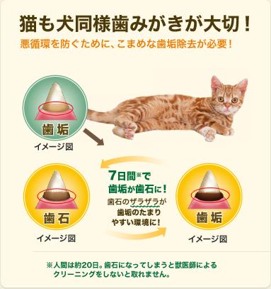 【メール便対応可】正規品 猫用 グリニーズ  グリルフィッシュ味 70g 【猫/おやつ/歯磨き/グリニーズ】