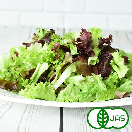 無化学農薬 無化学肥料 有機栽培 信頼 国産 低価格化 レタスミックス 西日本 オーガニック 40g
