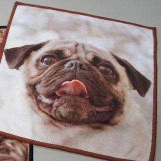 レターパックライト370円対応 感謝セール パグ雑貨 自社オリジナル商品 有名な パグマイクロファイバーハンカチタオル pug 犬 5☆大好評 パググッズ イヌ