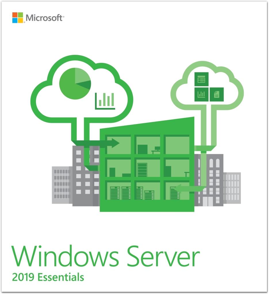 G3S-01195 直送 代引不可・他メーカー同梱不可 日本マイクロソフト Microsoft Windows Server Essentials 2019 64Bit Japanese 1 License DVD 【1入】【キャンセル不可】