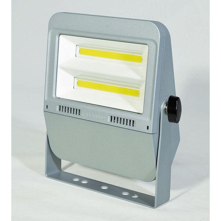 フラットライト50W 昼白色 LEN-F50D-SL-50K送料無料 投光器 作業灯 照明 LED 投光器照明 投光器LED 作業灯照明 照明投光器 LED投光器 照明作業灯 日動工業 【D】