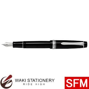 パイロット 万年筆 カスタムヘリテイジ912 SFM14K10号 FKVH2MR-BSFM