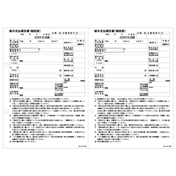 ヒサゴ 給与支払報告書(総括表) 2面 A4 500枚 GB1155