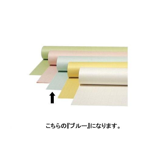 オキナ 全判プロジェクト 方眼罫50mm 50枚巻 ブルー TPZ5BU