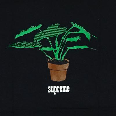 Supreme (シュプリーム) PLANT T