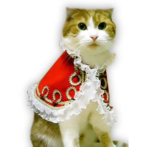キャットプリン  マーガレット王女ちゃまのドレス(レッド)  1枚