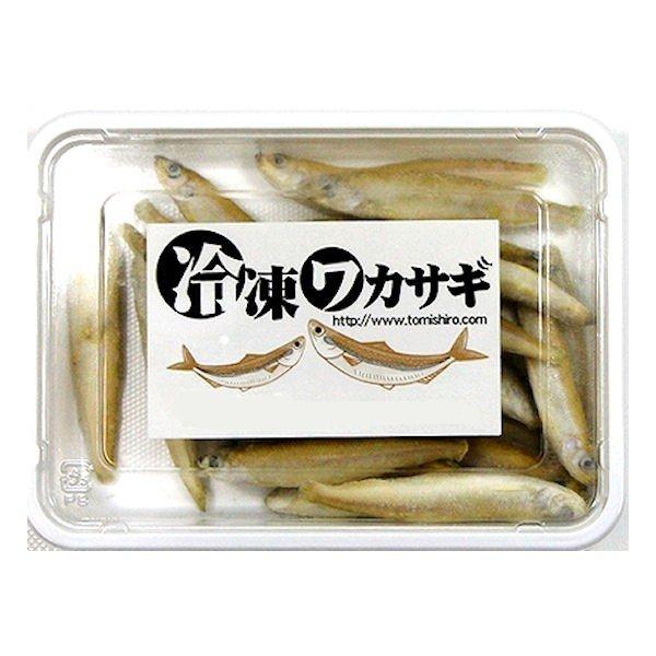 新生活 亀 大型魚用エサに最適 ワカサギ バラ冷凍 100g×15個セット エサ 餌 両生類 訳あり商品 クール便にてお届け えさ