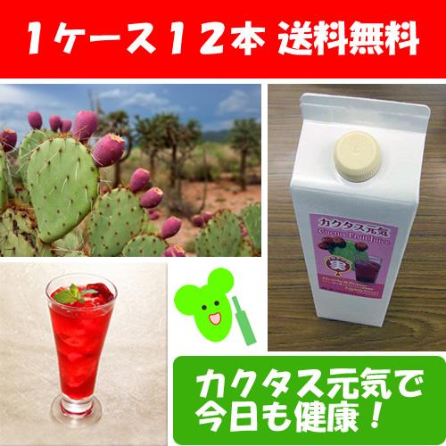 送料無料:カクタスドリンク(サボテンジュース)1ケース(12本)1000ml Nopal Cactus Juice