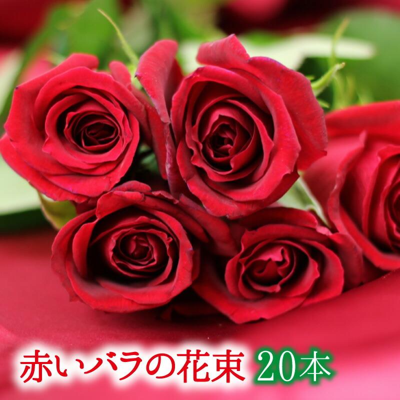 母の日 遅れてごめんね 母の日 赤いバラの花束20本【画像確認サービス有】【楽ギフ_メッセ入力】【フラワーギフト】【クリスマス】 ギフト 贈り物 プレゼント