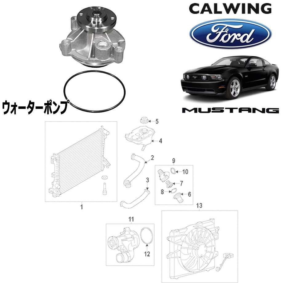 FORD/フォード MUSTANG/マスタング '05y-'14y | ウォーターポンプ FORD純正品 【アメ車パーツ】