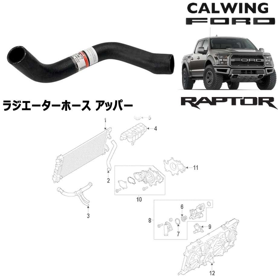FORD/フォード F-150 RAPTOR/ラプター '17y- | ラジエーターホース アッパー MOTORCRAFT純正 【アメ車パーツ】