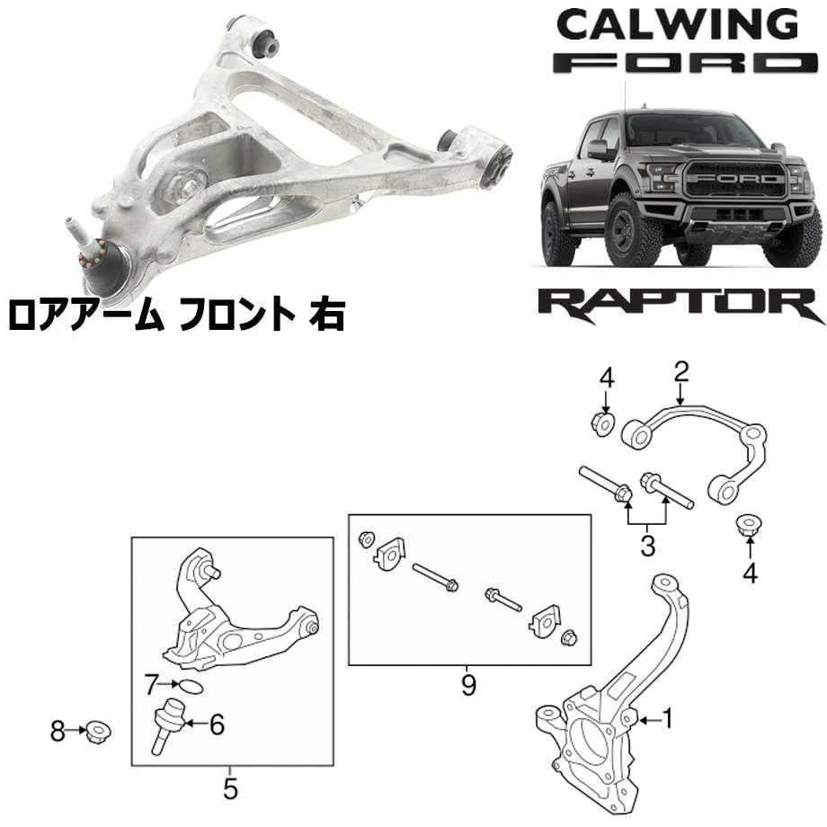 FORD/フォード F150 RAPTOR/ラプター '17y- | ロアアーム ASSY フロント 右 MOTORCRAFT純正【アメ車パーツ】