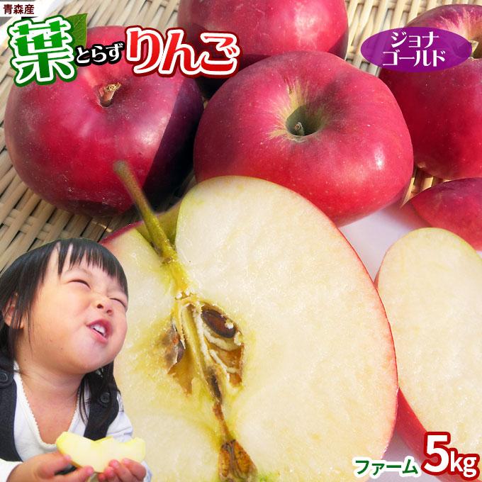 男女兼用 甘酸っぱくてジューシーな昔懐かしい濃い味りんご 葉摘みをしないこだわりの葉とらず栽培 りんごに残る黄色い葉の影が美味しさの証です 割引も実施中 2021予約スタート 葉っぱの影は甘さのサイン 葉とらずりんご ジョナゴールド5kg ファーム 13-23玉 本場青森 送料無料 ゴールド農園 のため同梱不可 リンゴ りんご ※産地直送 家庭用 訳あり