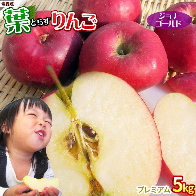甘酸っぱくてジューシーな昔懐かしい濃い味りんご 葉摘みをしないこだわりの葉とらず栽培 りんごに残る黄色い葉の影が美味しさの証です 2021予約スタート 葉っぱの影は甘さのサイン 葉とらずりんご ジョナゴールド5kg プレミアム 14-18玉 リンゴ 贈答用 期間限定今なら送料無料 スーパーセール期間限定 送料無料 本場青森 ※産地直送のため同梱不可 のため同梱不可 ※産地直送 ゴールド農園 りんご