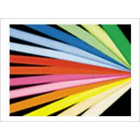 ルミネカラー 電球色[濃][LC-506] 蛍光ランプ用フィルター25本【※代引・返品・同梱不可】【送料無料】