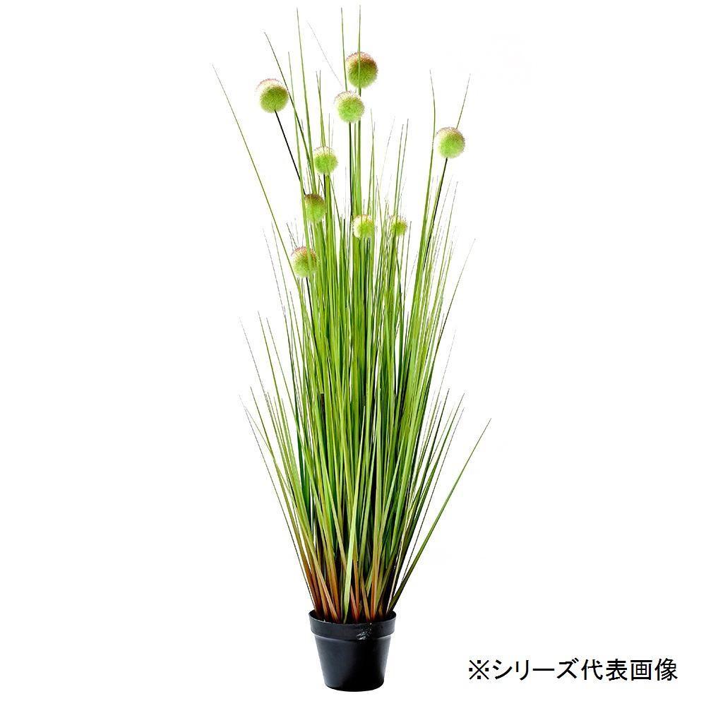 人工観葉植物 ボールグラス L 約153cm 159013740【C】