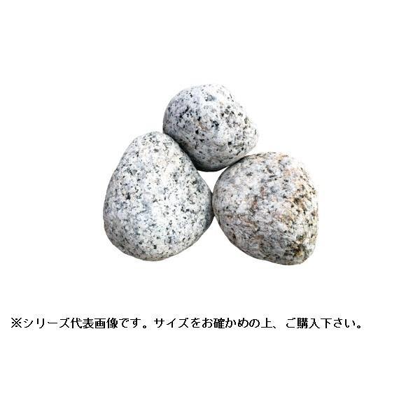 マツモト産業 ごろた 伊勢ごろた 5~6寸 20kg【代引き不可】【C】