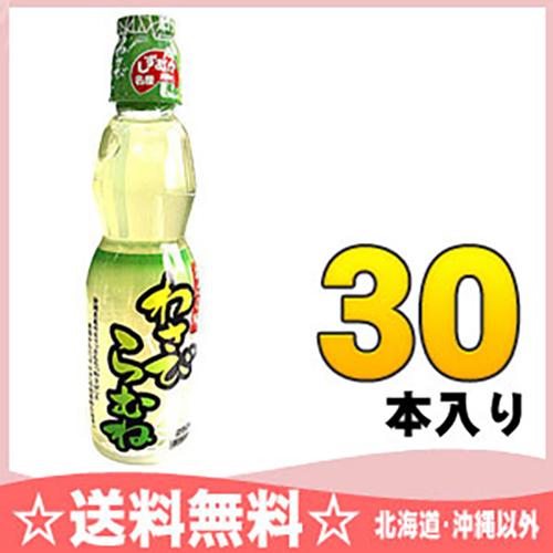 木村喝辣根 ramune 250 毫升宠物 30 件