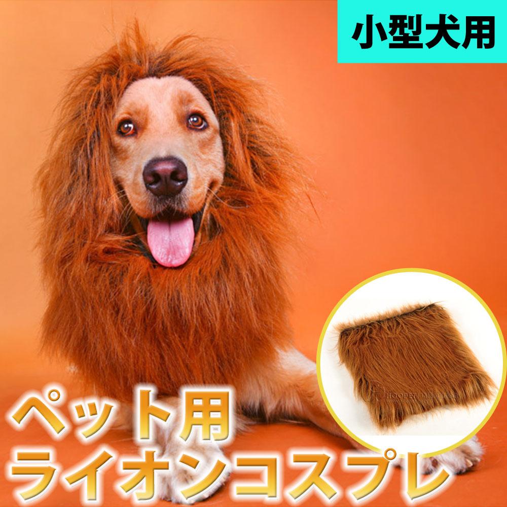 ペット用 ライオンコスチューム 小型犬 犬 猫 商品 コスプレ 送料無料 たてがみコスチューム 帽子 ハロウィン LP-02 ライオン サービス ペット 仮装