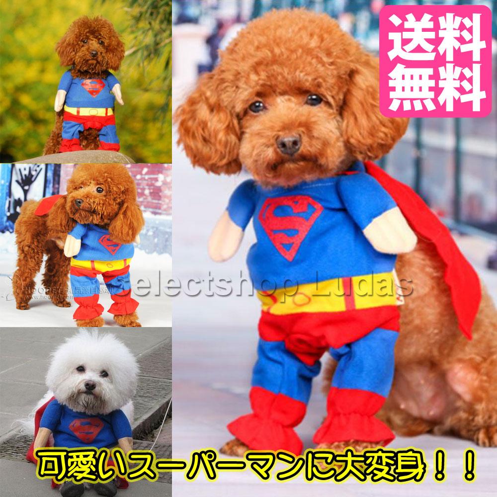 スーパーマン 犬服 猫服 仮装 二足歩行 コスプレ 送料無料 小型犬 全国一律送料無料 ハロウィン M ショップ LP-09 ドッグウエア S XL L