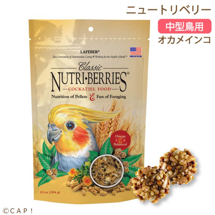 CAP! 鳥の餌 おやつ 賞味期限2022/10/7 ラフィーバー ニュートリベリー オカメインコ 10oz(284g)