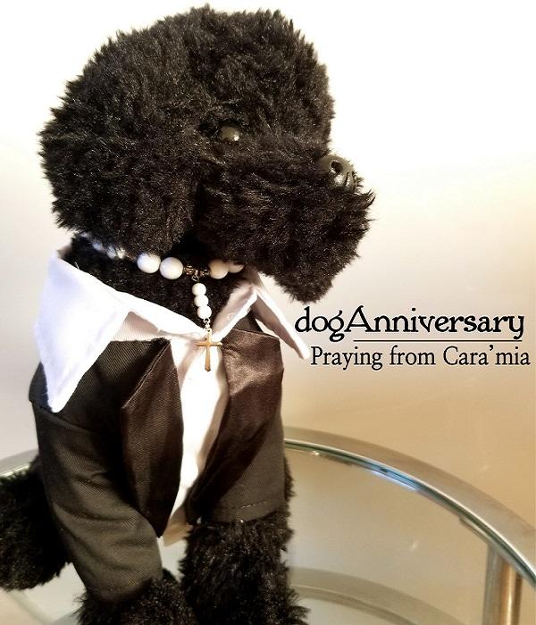 犬用 タキシード ワンピース アクセサリー カップル 犬 首輪 ドレス ネックレス ダックスフンド トイプードル 子犬 ドレスアップ チワワ かわいい 人気 セレブ 日時指定 おしゃれ 予約