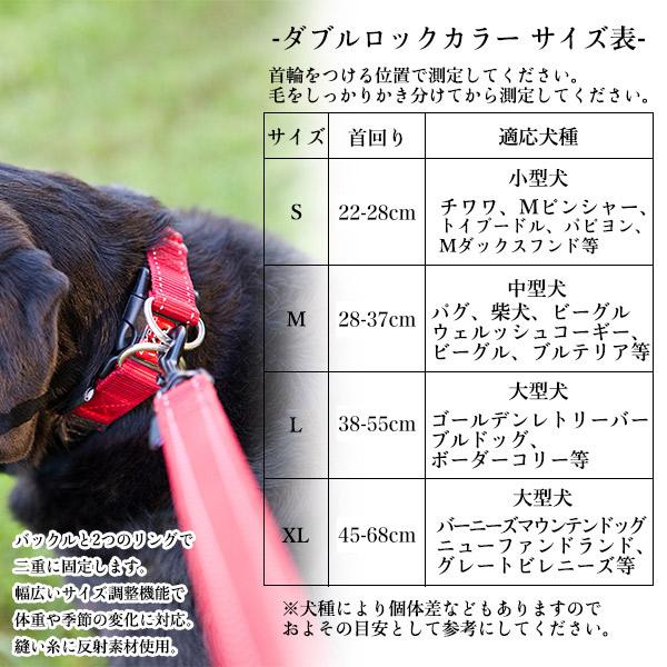 イージードッグ EZYDOG ダブルロックカラー S【犬の首輪(くびわ)/小型犬用/犬用首輪】【お出かけ・お散歩グッズ/おでかけグッズ】【犬用品/ペット・ペットグッズ/ペット用品】