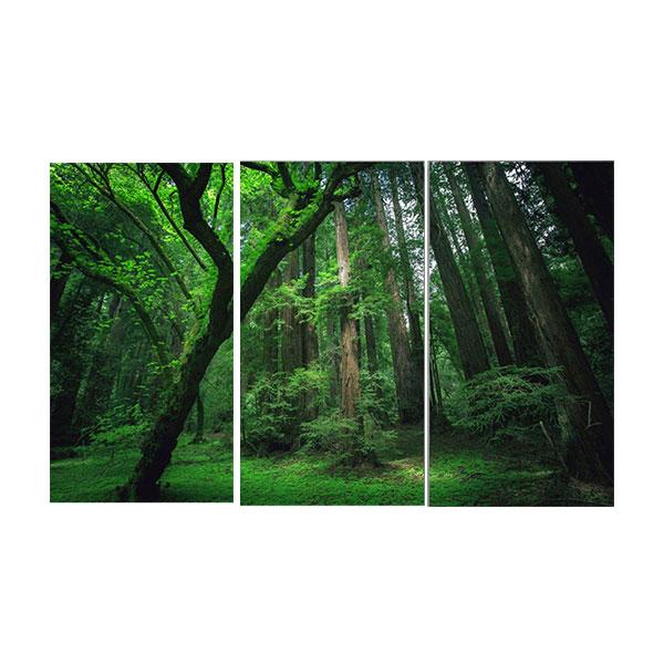 絵画 インテリアアート キャンバス パネルアート Green Tree Forest 個性派 40cm×80cm 3枚セット
