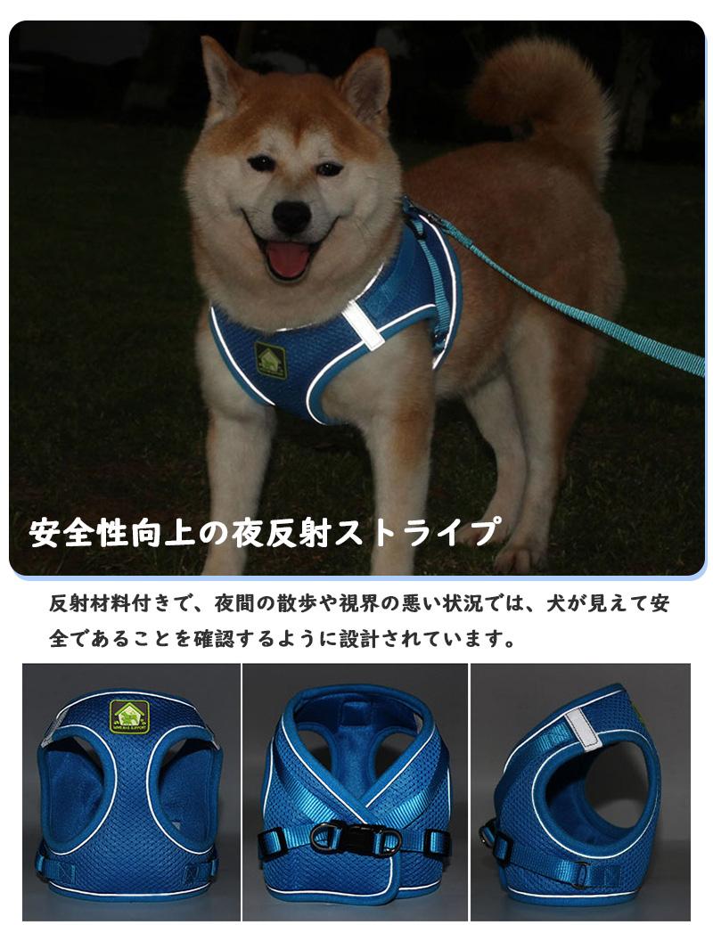 散歩 しつけ 子犬