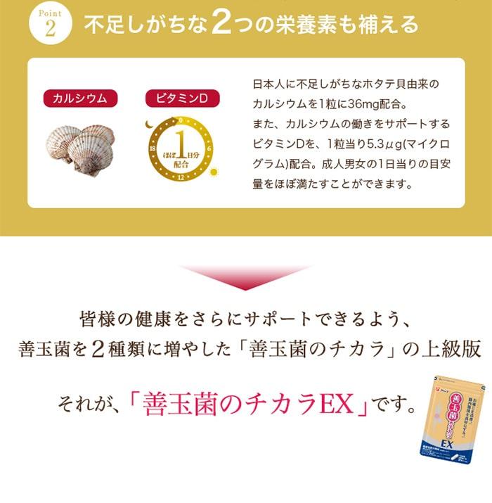 【送料無料】フジッコ公式善玉菌のチカラEX3袋組