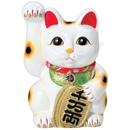常滑焼 招き猫 梅月 白手長小判猫 (右手)13号 高さ:43cm