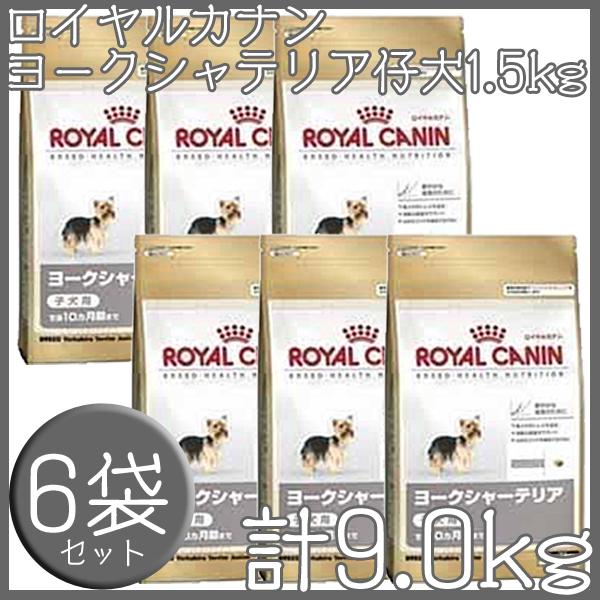 【最大350円OFFクーポン有】ロイヤルカナン 犬 BHN ヨークシャーテリア 子犬用 1.5kg×6個セット 送料無料 生後10ヵ月齢まで パピー 仔犬 犬 フード ドッグフード ドライ プレミアムフード royal canin キャットランド [3182550743471]【D】