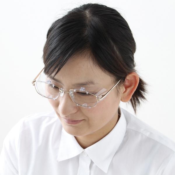 【30H限定ポイント2倍!14日20時~】アイリスオーヤマ めがねスキマガード ML ERG-MERG-L キャットランド