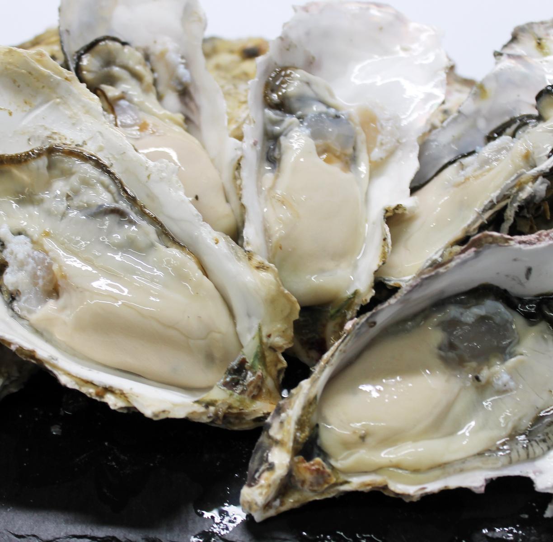 【業務用】訳あり 送料無料 宮城産 殻付き牡蠣 14kg 生食