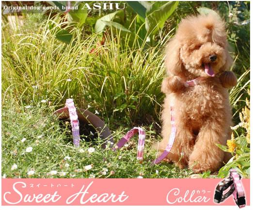 ASHU * sweetheart lead size: s height 110 cm 5P13oct13_b