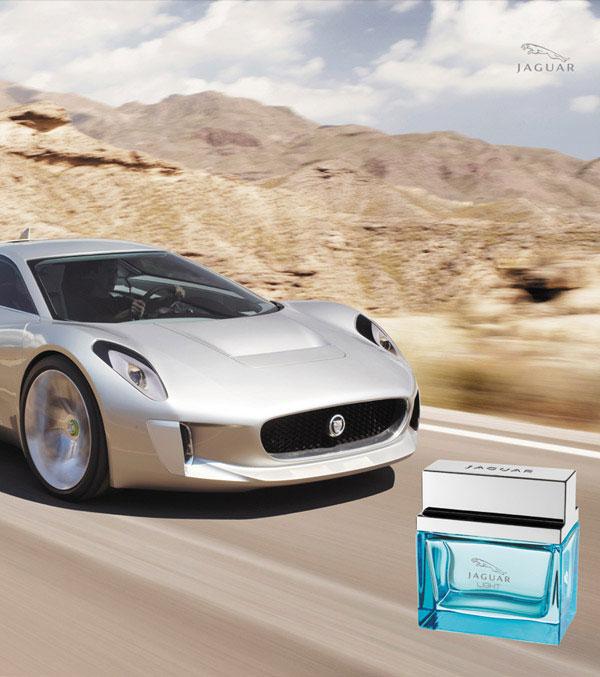 Rakuten Ichiba Shop World Gift Cavatina Brand New Jaguar Jaguar