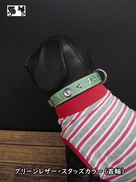 コツ首輪シンプルなスタッズ首輪をのお探しの方にオススメ オリジナル首輪 MR Factory ゴツデザイン オリジナルグリーン #ブヒ #フレンチブルドッグ ヌメ革製首輪mr0083 売店 #レザーカラー #パグ #ボストンテリア ご予約品