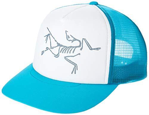 [アークテリクス] BIRD TRUCKER HAT スポーツ メンズ DARK FIROZA/DETOS GREY US ONE SIZE (FREE サイズ) [並行輸入品]