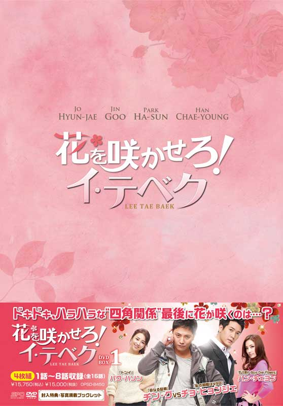 花を咲かせろ!イ・テベク DVD-BOX1(4枚組)
