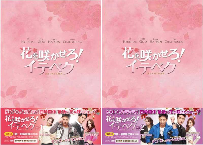 花を咲かせろ!イ・テベク DVD-BOX1+2のセット