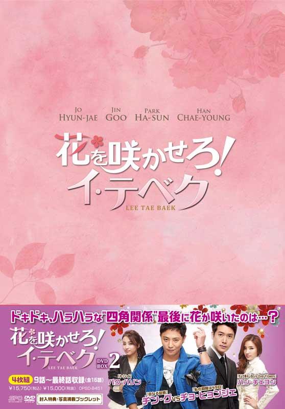 花を咲かせろ!イ・テベク DVD-BOX2(4枚組)