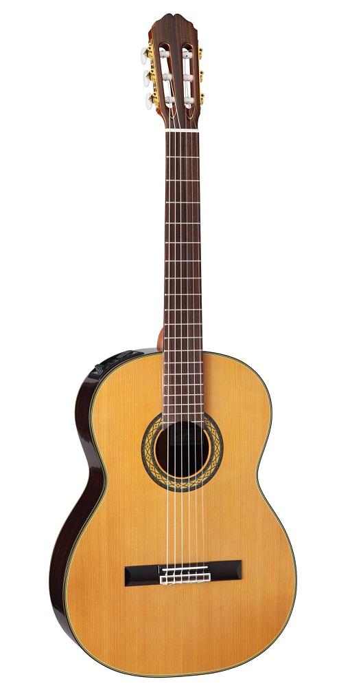 【送料無料】Takamine 《タカミネ》 《タカミネ》 PTU340N PTU340N [PTU-340N] N アコースティックギター(エレガット) [PTU-340N], 粂治郎:44a0ddd3 --- sunward.msk.ru