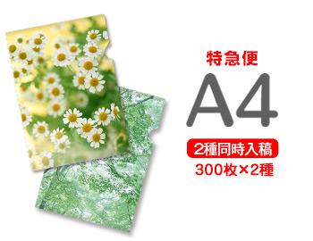 【特急便】A4クリアファイル300枚+300枚=600枚