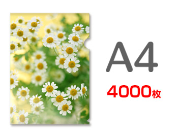 A4クリアファイル印刷4000枚(単価23.25円)