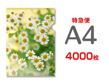 【特急便】A4クリアファイル4000枚(単価29.625円)