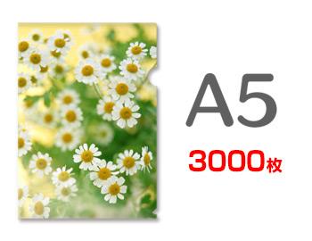 A5クリアファイル印刷3000枚